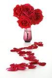 путь лепестков розовый Стоковые Фотографии RF