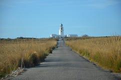 Путь маяка Стоковые Изображения RF