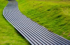 Путь моста в траве Стоковое Изображение