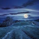 Путь на луге горного склона в горе на ноче Стоковое Изображение RF