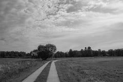 Путь над лугом Стоковое Изображение RF