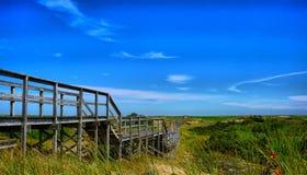 Путь над дюнами на пляже острова сливы Стоковое Изображение