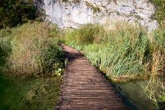 Путь озера Стоковое фото RF