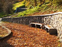 Путь осени в парке Стоковое Изображение