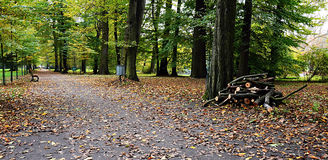 Путь осени в парке Стоковая Фотография RF