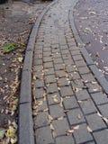 Путь осени Стоковое фото RF