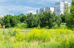 путь парка города Стоковое Изображение RF