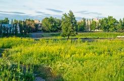 путь парка города Стоковые Фотографии RF