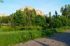 путь парка города Стоковые Фото
