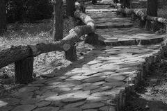 Путь парка деревянный Стоковые Изображения