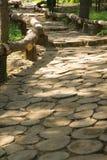Путь парка деревянный Стоковое Фото