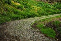 путь парка Стоковые Фото