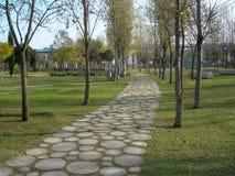путь парка Стоковое Изображение