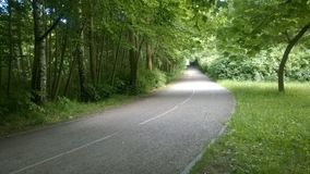 путь парка Стоковое фото RF