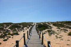путь пляжа к Стоковые Изображения
