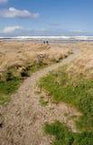 путь пляжа к стоковые фотографии rf