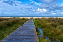 путь пляжа Стоковые Фото
