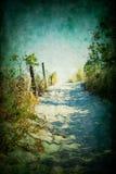 Путь пляжа Стоковая Фотография