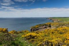 Путь побережья Уэльса подбородков Haroldstone около обширной гавани Стоковые Фото