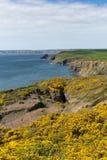 Путь побережья Уэльса подбородков Haroldstone около обширной гавани Стоковая Фотография RF