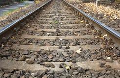 путь поезда солнца железной дороги осени яркий светлый Стоковое фото RF