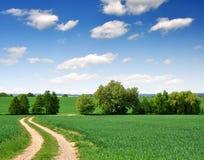 путь поля Стоковое Изображение