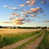 Путь поля Стоковая Фотография RF