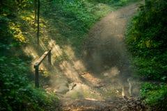 Путь похода с туманом на зоре стоковые фотографии rf
