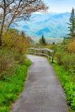Путь природы в горах Стоковое Изображение RF