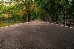 Путь прогулки в парк стоковые фото