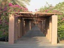Путь прогулки через цветки Стоковые Изображения