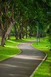 Путь прогулки в зеленом парке. Стоковая Фотография