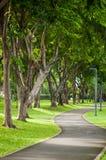 Путь прогулки в зеленом парке Стоковое Изображение