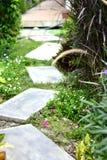 Путь прогулки в зеленом саде с цветками Стоковые Изображения