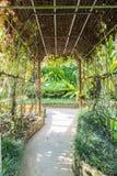 Путь прогулки в саде бабочки Стоковые Изображения RF