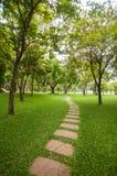 Путь прогулки в саде в вертикальном взгляде Стоковые Изображения