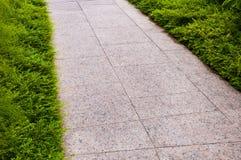 Путь прогулки в саде Стоковые Изображения RF