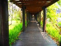 Путь прогулки к внешнему цветочному саду Стоковые Изображения