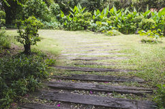 Путь прогулки к саду Стоковое фото RF