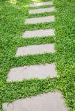 Путь прогулки на траве Стоковая Фотография RF