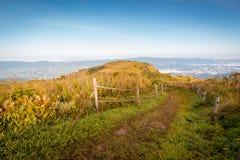 Путь прогулки природы Стоковое Изображение RF