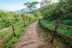 Путь прогулки природы Стоковые Фото