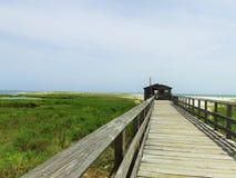 путь прогулки пляжа Стоковые Изображения