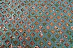 Путь прогулки с картиной травы Стоковые Изображения