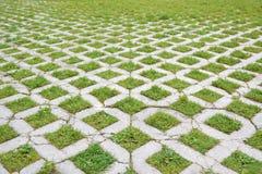 Путь прогулки травы и булыжника в городском парке пункт исчезая Стоковые Фотографии RF