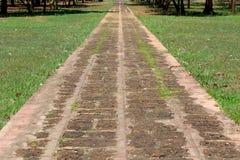 Путь прогулки Стоковая Фотография
