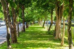 Путь прогулки Стоковое фото RF