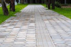 Путь прогулки Стоковые Изображения RF