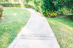 Путь пути сада Стоковые Фото