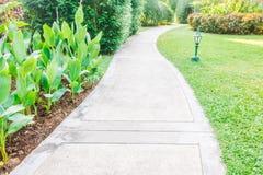 Путь пути сада Стоковое Изображение RF